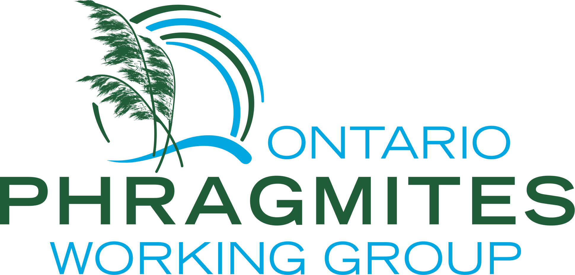 Ontario Phragmites Working Group logo